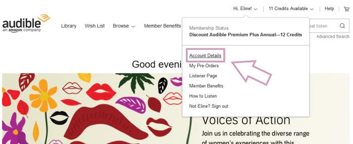 How to cancel Audible in browser: Click on account details